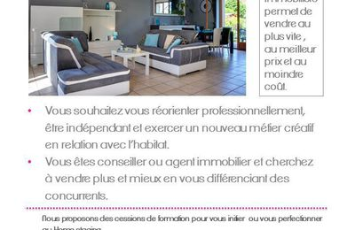 pavillon vendu breuillet 91 apr s home staging le blog de homestaging decoration essonne. Black Bedroom Furniture Sets. Home Design Ideas