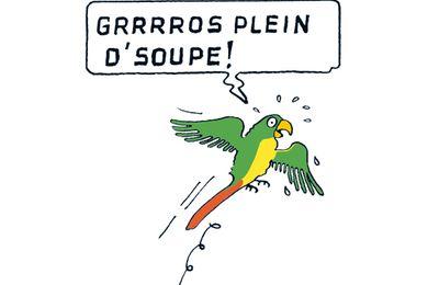 Le Perroquet de Jules Verne (cabinet de curiosités 2 )