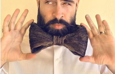 HIPSTER ? Incredibeard !
