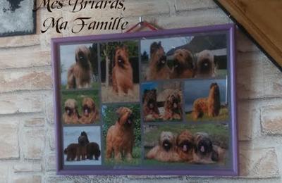 Ma Famille Bris