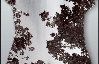 Caresses de feuilles