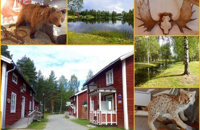 En Laponie suédoise (2)