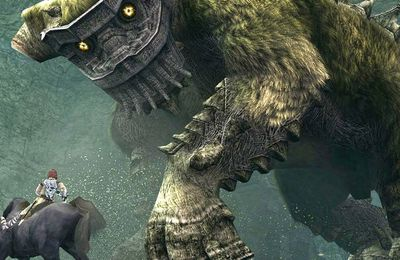 [Jeu] Shadow Of The Colossus : La critique
