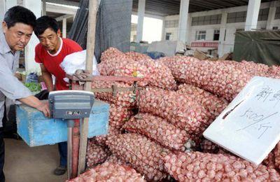 Attention : L'ail importé de la Chine est plein d'eau de Javel et de produits chimiques ! Voici comment vous pouvez le repérer sur le marché