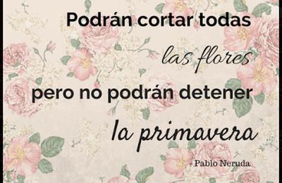 Pablo Neruda - Castellano - 31 Frases
