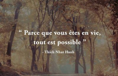 Thich Nhat Hanh - 3 Citations