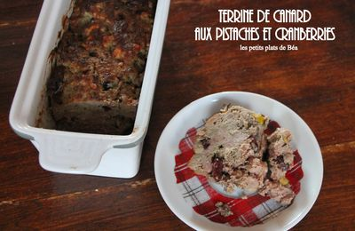 Terrine de canard aux pistaches et cranberries