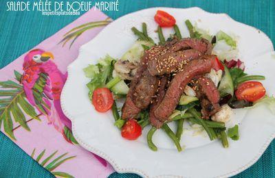 Salade mêlée au boeuf mariné et grillé