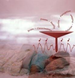 Le sommeil et la mémoire