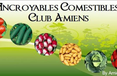 Incroyables Comestibles / Incredible Edible
