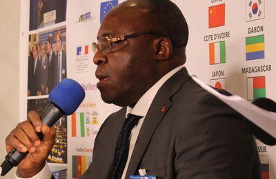 CENTRAFRIQUE: BANGUI VILLE VERTE, UNE NAKOMBOMANIAQUE ?