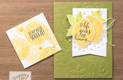 STAMPIN'UP vidéo gratuite gaufrage Feuilles superposées / 3D Dynamic Textured Impressions Embossing Folders  by Stampin' Up!