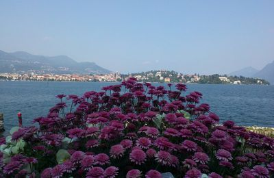 Italie - Lac Majeur & ses Iles