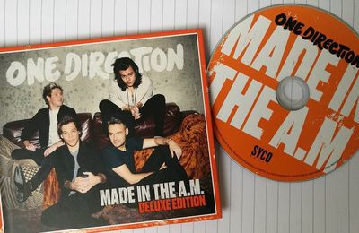 Made in the A.M : Un album plus mature.