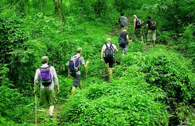 Jungle Trekking in Uttarakhand