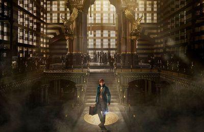 Les Animaux Fantastiques : L'univers magique de Rowling est de retour !