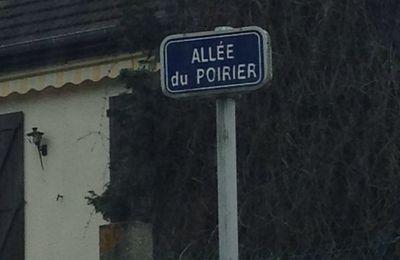 Allée du Poirier
