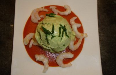 GLACE AVOCAT CREVETTES TOMATE