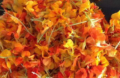 Gelée de fleurs de capucine