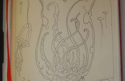 Carnet rouge - Méduses