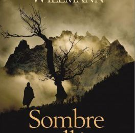 Sombre vallée - Thomas Willmann