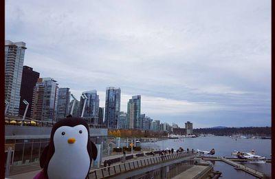 Le Pingouin à Vancouver !!