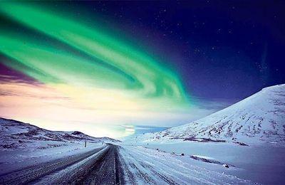 Une compagnie aérienne canadienne offre un vol spécial pour voir les aurores boréales