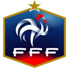 Match amical  France de football