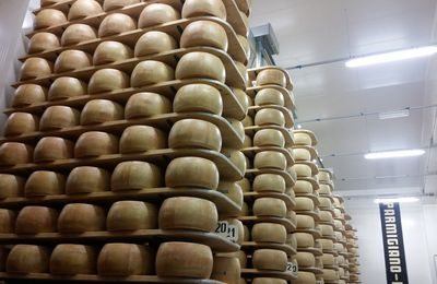 SM Visit at the Parmesan factory