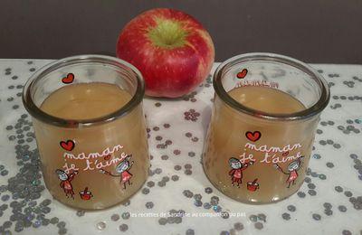 Compote de pommes à la cassonade onctueuse et veloutée au companion thermomix ou autres robots