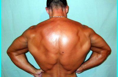 La musculation avec les haussements d'épaules (shrug), Sébastien Dubusse, blog musculationfitnesspassion