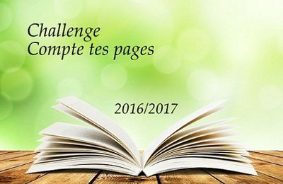 Challenge Compte tes pages