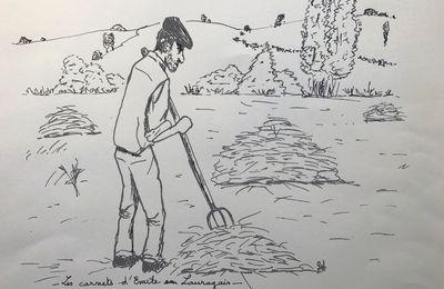 Activités de juillet en Lauragais : mettre le foin en tas