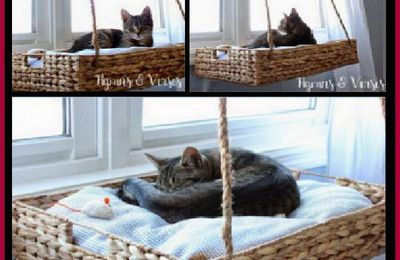 DIY Hanging Window Basket Cat Perch