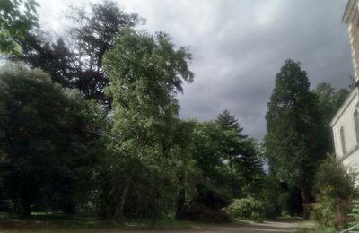 L'arboretum des Barres - Suite de la visite