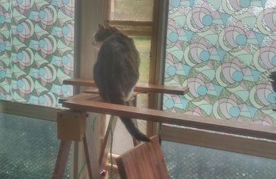 Aération de balcon sécurisé pour Chats avec de la récupération