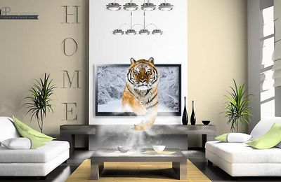 Tiger Screen