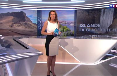 Anne-Claire Coudray JT 13H TF1 le 23.04.2017