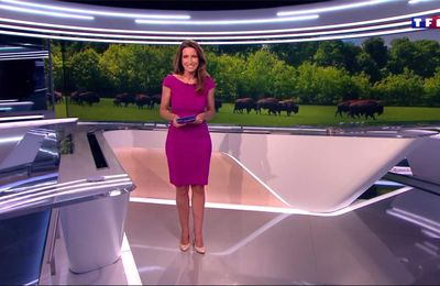 Anne-Claire Coudray JT 20H TF1 le 28.05.2017