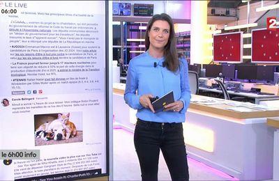 Camille Grenu Franceinfo: le 11.07.2017