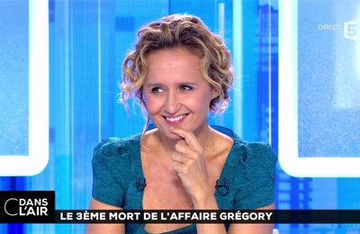 Caroline Roux C Dans l'Air France 5 le 12.07.2017