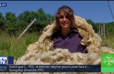 Fanny Agostini A Vous la Terre BFM TV le 11.08.2017