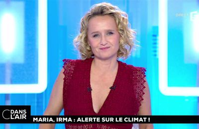 Caroline Roux C Dans l'Air France 5 le 19.09.2017
