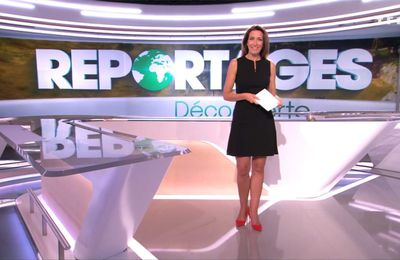 Anne-Claire Coudray Reportages TF1 le 14.10.2017