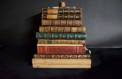 L'enfer du bibliophile - 2.