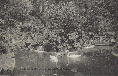 La Chaux-de-Fonds - Au Bois du Petit Château