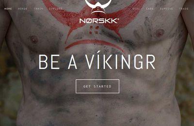 """norskk.com  : Le Site qui fait de vous un """"VIKINGR""""  (si vous l'êtes déjà ! )"""