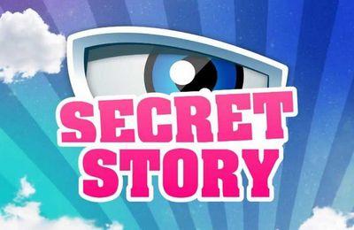 Secret Story 11: les nouveautés de la rentrée dévoilées en exclusivité !
