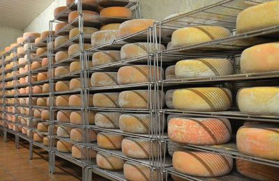 La ferme du Castérieu 65 800 Orleix