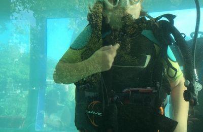 Baptême de plongée pour Jade